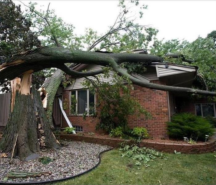 Tree that has fallen on a house after a storm.