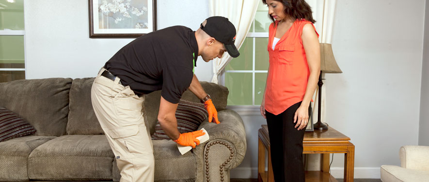 Sioux City, IA carpet upholstery cleaning