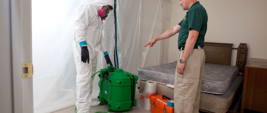 Sioux City, IA mold removal process